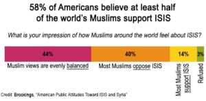 us perception of isis